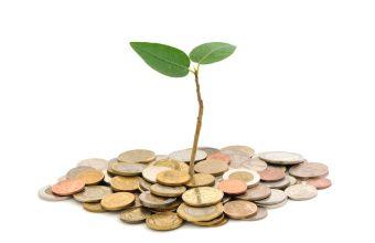 "Pet De facto Aktivni organizacija prikupilo sredstva za ""matching grant"""