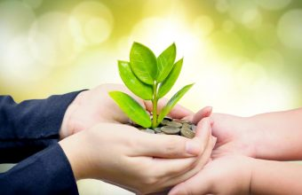 Konkurs za Zelene ideje – naredni koraci